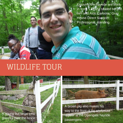 Opengate Wildlife Tour